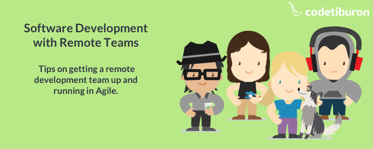 Remote Agile Team of Developers