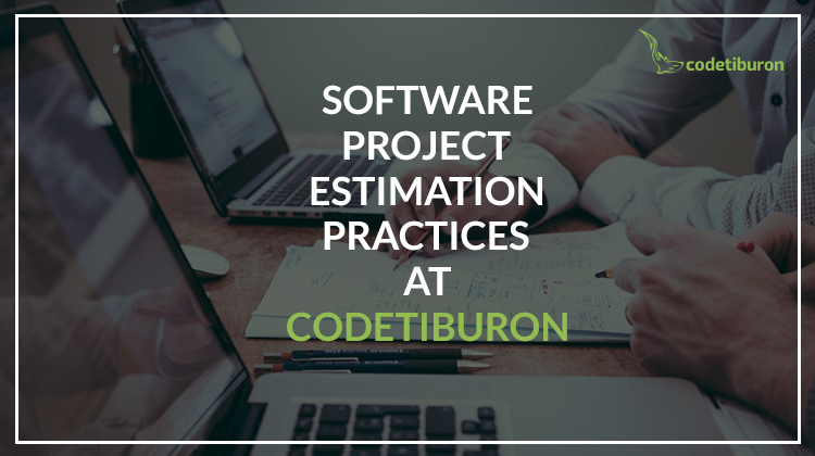 Software project estimation practices at CodeTiburon