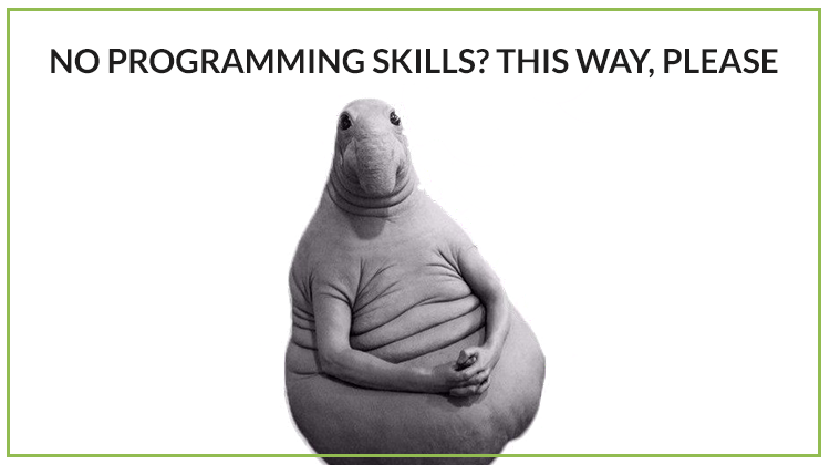 Meme: 'No programming skills? This way, please'