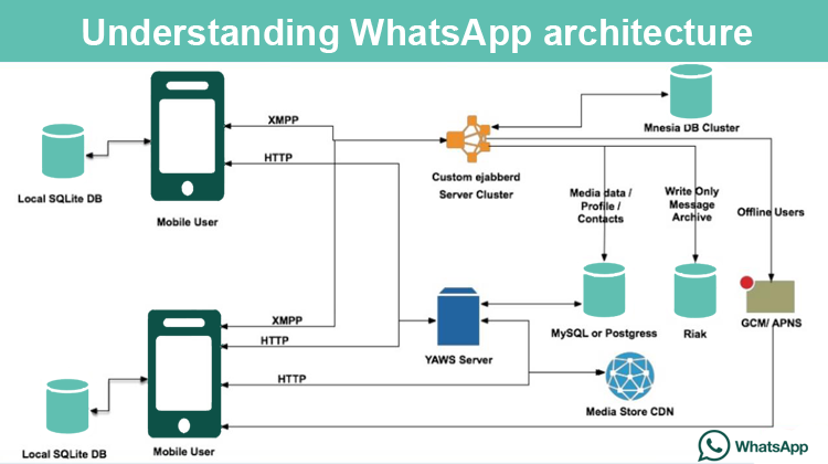 How to Create a Chat Application like WhatsApp: Key Points | CodeTiburon