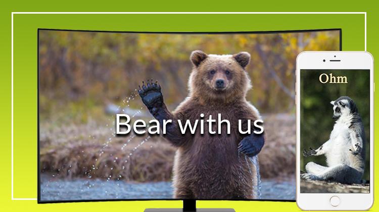 Bear with us meme